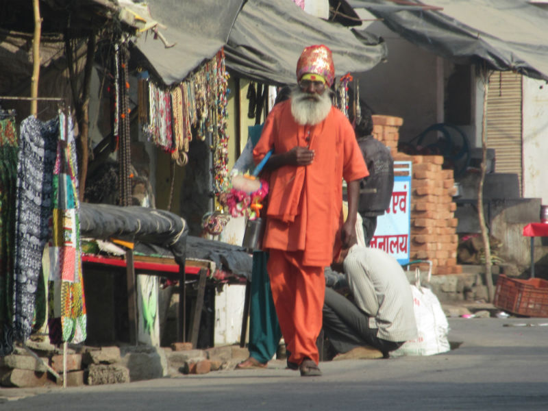 Sadhu or Holy Man