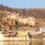 Cultural Tour with Tiger & Taj