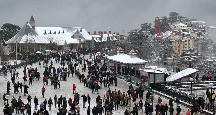 Shimla Kufri Chail Tour Package